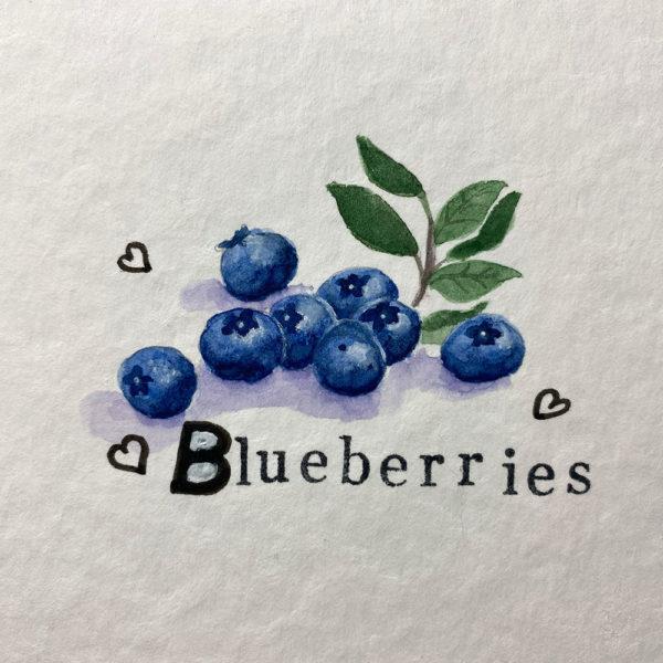 Blueberries - Blaubeeren